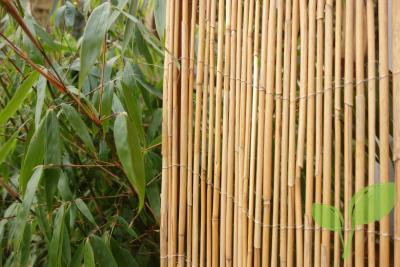De natuurlijke tuin is een blijvende trend